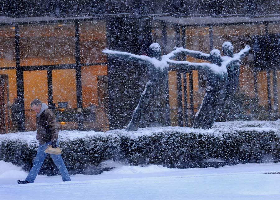 snowstorm1_i100107203725.jpg