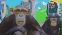Monkeyshines Car Wash