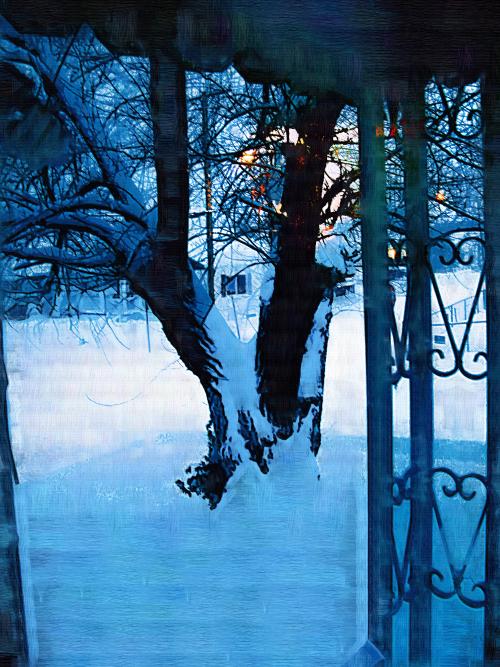 snow tree 005