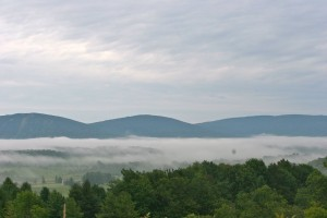 Canaan Valley Morning