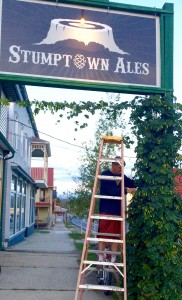 Jon Robeson picking hops for Stumptown Ales